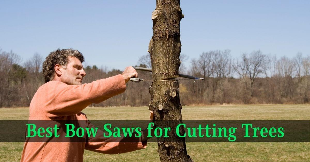 Best Bow Saws for Cutting Trees